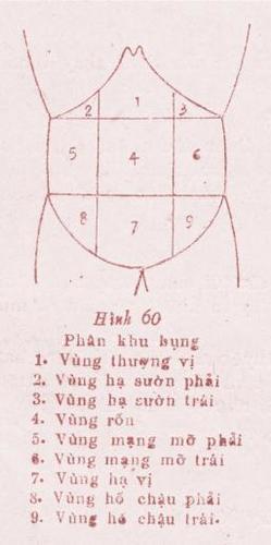 dau-vung-thuong-vi