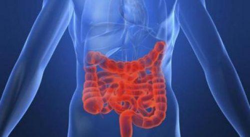 triệu chứng bệnh đường ruột kém