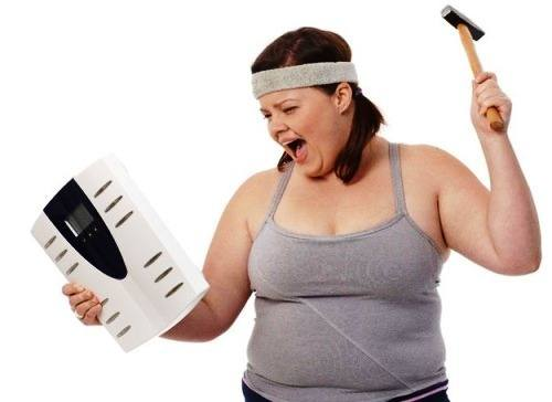 hệ vi khuẩn đường ruột và béo phì