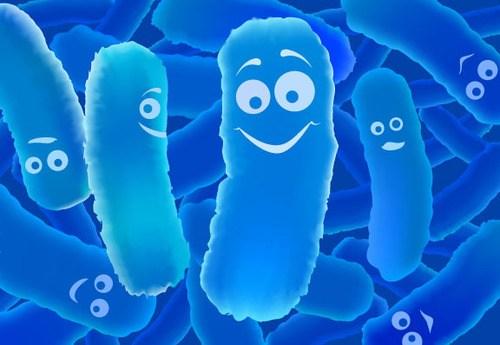 lợi khuẩn Bifido