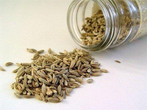 hạt thìa là chữa bệnh